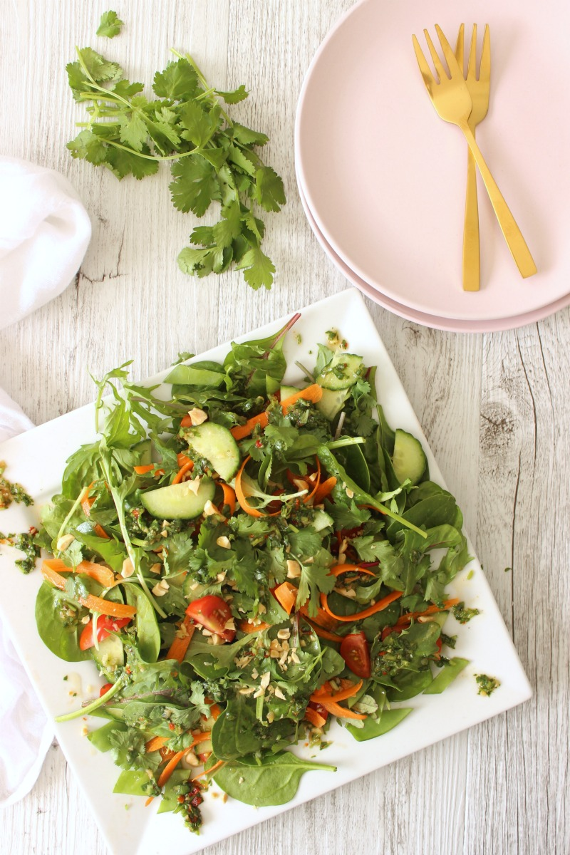 A deliciously refreshing Thai salad served with a coriander dressing recipe you will keep coming back to.